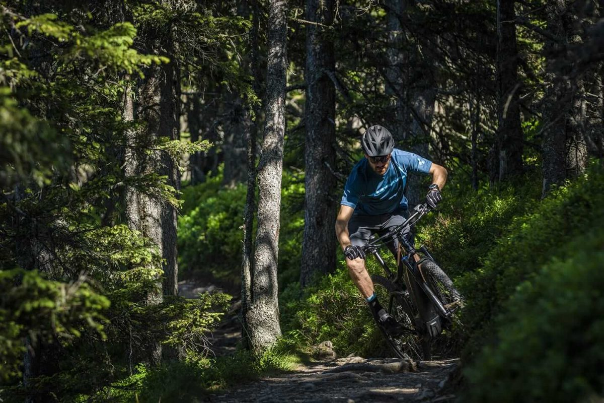 Im Wald können auch bekannte Routen vom einen auf den anderen Tag verändern.