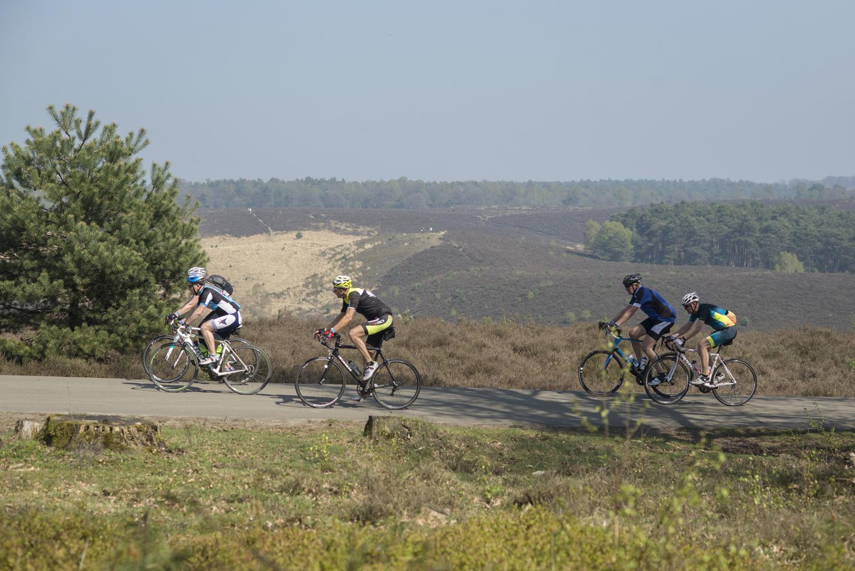 Vanuit Wageningen het fietswalhalla van de Posbank op.