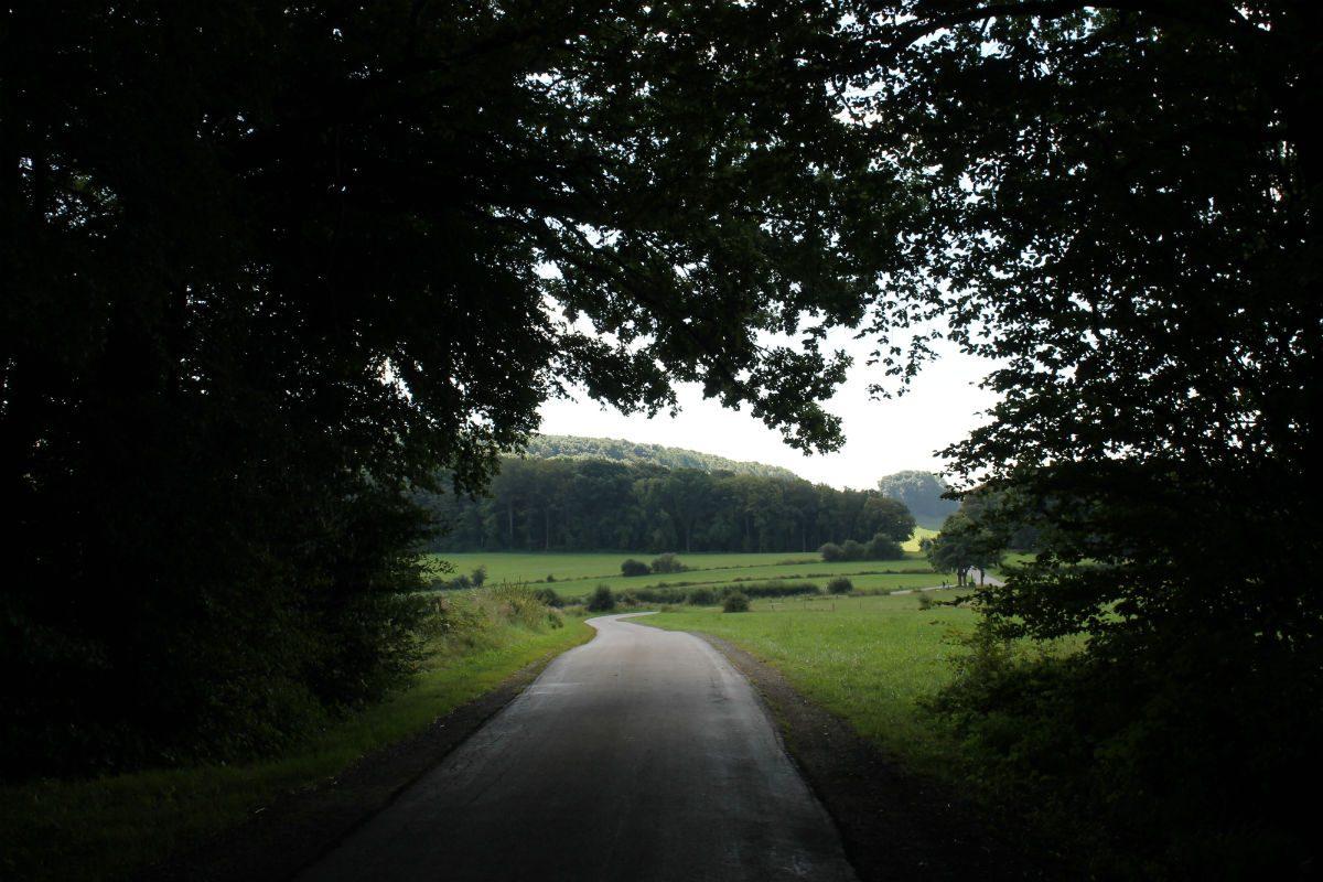Ben's Bike trip - De route richting Trier liep over rustige weggetjes