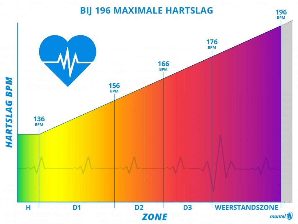 blog Olle grafiek hartslag