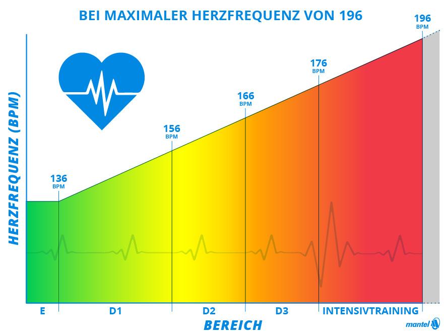 Trainingszonen Herzfrequenz Bereich