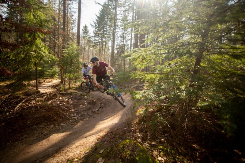 mountainbiken in de zomer